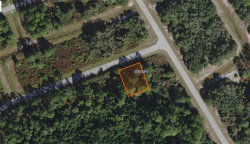 Photo of MARLIN DR, POINCIANA, FL 34759 (MLS # S5024973)