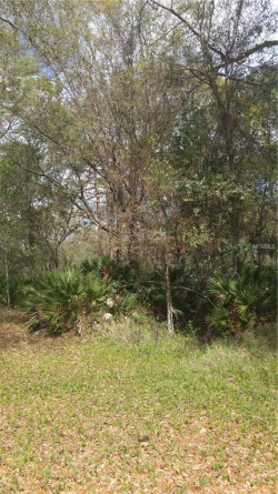 Photo of NINE IRON, WESLEY CHAPEL, FL 33544 (MLS # T2932045)