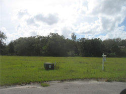 Photo of 12705 Mcintosh Groves Lane, THONOTOSASSA, FL 33592 (MLS # T2935862)