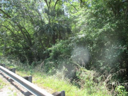 Photo of LITHIA PINECREST RD, VALRICO, FL 33596 (MLS # T3101868)