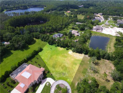 Photo of 19006 Deer Point Place, ODESSA, FL 33556 (MLS # T3118723)