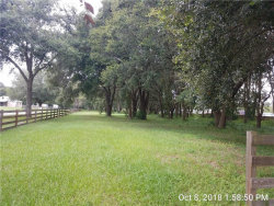 Photo of 13973 Curley Road, DADE CITY, FL 33525 (MLS # T3135102)