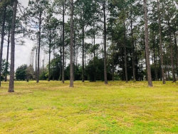 Photo of 35940 Ramsey Ridge Drive, DADE CITY, FL 33523 (MLS # T3154219)