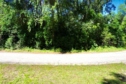 Photo of 20550 Robbins Road, DADE CITY, FL 33523 (MLS # T3169291)