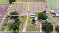 Photo of GALLAGHER, DOVER, FL 33527 (MLS # T3181167)
