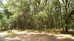Photo of Lot 0050 Thornhaven Lane, DADE CITY, FL 33523 (MLS # T3193216)