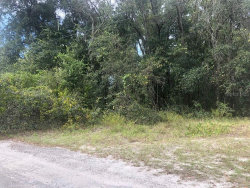 Photo of Lot 4 Block 2 Rutherford Lane, HUDSON, FL 34669 (MLS # T3198183)