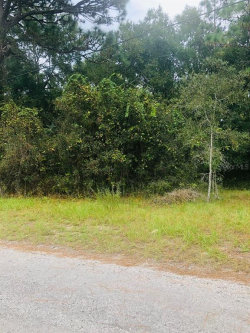 Photo of 13352 Park Lane, HUDSON, FL 34669 (MLS # T3198185)