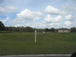 Photo of 12706 Mcintosh Groves Lane, THONOTOSASSA, FL 33592 (MLS # T3212968)