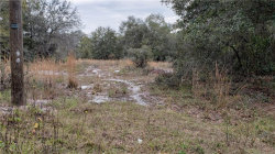 Photo of 00 Jordan Road, DOVER, FL 33527 (MLS # T3222536)