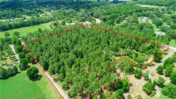 Photo of BAILEY HILL RD, DADE CITY, FL 33525 (MLS # T3239941)
