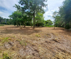 Photo of 29040 Johnston Road, DADE CITY, FL 33523 (MLS # T3251783)