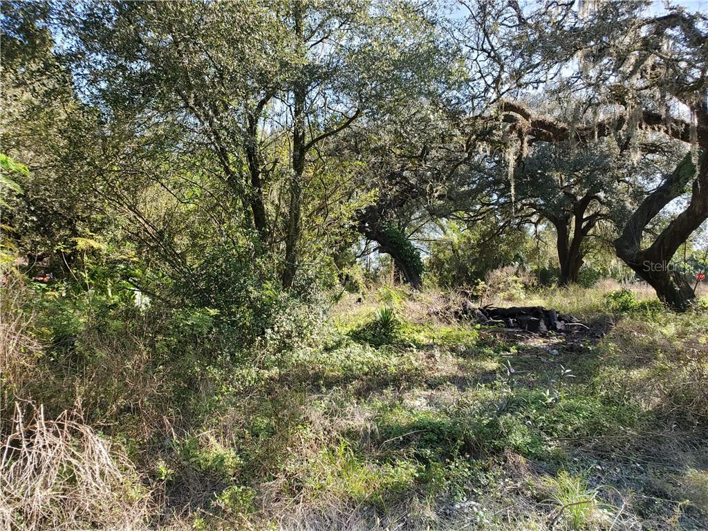 Photo for STATE RD 575, DADE CITY, FL 33523 (MLS # T3277785)