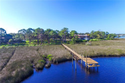 Photo of 1044 Riverside Ridge Road, TARPON SPRINGS, FL 34688 (MLS # U8003333)