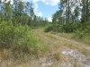 Photo of STATE ROAD 40, PIERSON, FL 32180 (MLS # V4723371)