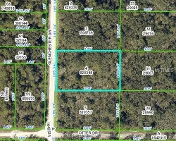 Photo of 7112 Glenchester Drive, WEBSTER, FL 33597 (MLS # W7800403)