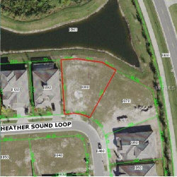 Photo of 7209 Heather Sound Loop, WESLEY CHAPEL, FL 33545 (MLS # W7811511)