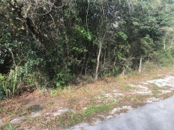 Photo of 189 Candlewick Avenue, SPRING HILL, FL 34608 (MLS # W7819676)