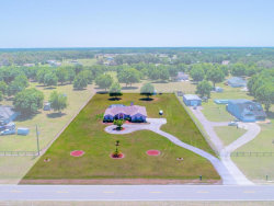 Photo of 13405 County Road 675, PARRISH, FL 34219 (MLS # A4400648)
