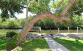 Photo of 3201 Bayou Sound, LONGBOAT KEY, FL 34228 (MLS # A4402941)