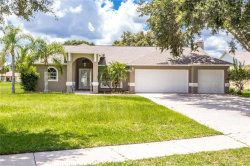 Photo of 2809 Bent Leaf Drive, VALRICO, FL 33594 (MLS # A4406361)