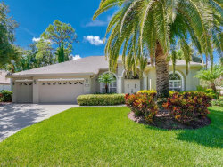 Photo of 8704 Woodbriar Drive, SARASOTA, FL 34238 (MLS # A4406673)