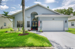 Photo of 1010 Calle Rosa Place, RUSKIN, FL 33573 (MLS # A4408213)