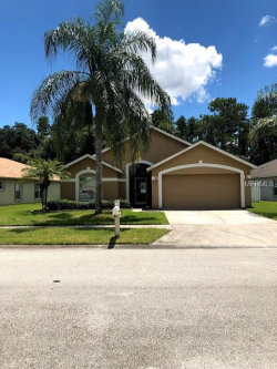 Photo of 29442 Crossland Drive, WESLEY CHAPEL, FL 33543 (MLS # A4419183)