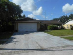 Photo of 4149 Rolling Springs Drive, TAMPA, FL 33624 (MLS # A4421830)
