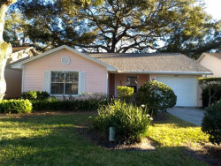 Photo of 1466 Cairn Court, PALM HARBOR, FL 34683 (MLS # A4427834)
