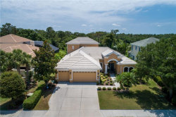 Photo of 14712 Sundial Place, LAKEWOOD RANCH, FL 34202 (MLS # A4436153)