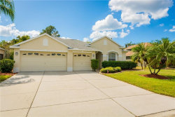 Photo of 2401 Wood Pointe Drive, HOLIDAY, FL 34691 (MLS # A4448015)