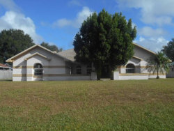 Photo of 705 Chancellar Drive, LUTZ, FL 33548 (MLS # A4448028)
