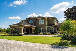 Photo of 17229 Breeders Cup Drive, ODESSA, FL 33556 (MLS # A4449137)