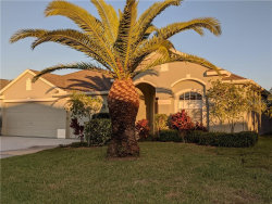 Photo of 2622 Eagles Crest Court, HOLIDAY, FL 34691 (MLS # A4453974)