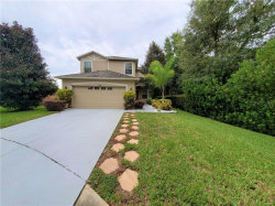 Photo of 12304 Field Point Way, SPRING HILL, FL 34610 (MLS # A4478539)