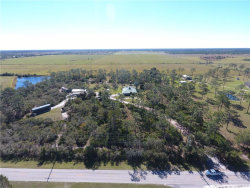 Tiny photo for 35790 Washington Loop Road, PUNTA GORDA, FL 33982 (MLS # C7410280)