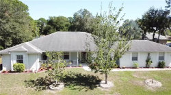 Photo of 386 Orleans Street, PORT CHARLOTTE, FL 33953 (MLS # C7421329)