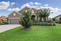 Photo of 13402 Trailing Moss Drive, DADE CITY, FL 33525 (MLS # E2400413)