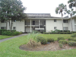 Photo of 5019 Mill Pond Road, Unit 3129, WESLEY CHAPEL, FL 33543 (MLS # E2400693)