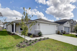Photo of 11206 Southern Cross Place, GIBSONTON, FL 33534 (MLS # E2400888)