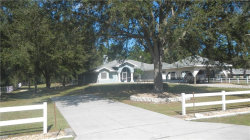 Photo of 32533 Greenwood Loop, WESLEY CHAPEL, FL 33545 (MLS # E2400916)