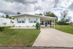 Photo of 10044 Hamp Drive, DADE CITY, FL 33525 (MLS # E2401137)