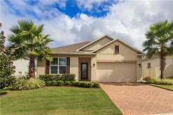 Photo of 2471 Hastings Boulevard, CLERMONT, FL 34711 (MLS # G5008672)