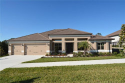 Photo of 216 Camelot Loop, CLERMONT, FL 34711 (MLS # G5010882)