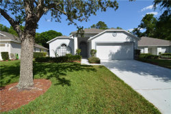 Photo of 3667 Kingswood Court, CLERMONT, FL 34711 (MLS # G5010895)