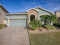 Photo of 16704 Abbey Hill Court, CLERMONT, FL 34711 (MLS # G5010990)