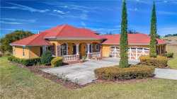 Photo of 21341 Marsh View Court, CLERMONT, FL 34715 (MLS # G5011124)
