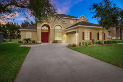 Photo of 2671 Valiant Drive, CLERMONT, FL 34711 (MLS # G5013207)