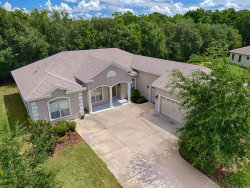Photo of 11024 Se 168th Loop, SUMMERFIELD, FL 34491 (MLS # G5018280)